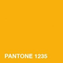 PANTONE1235